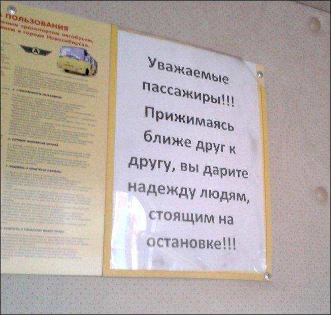 объявления в маршрутках