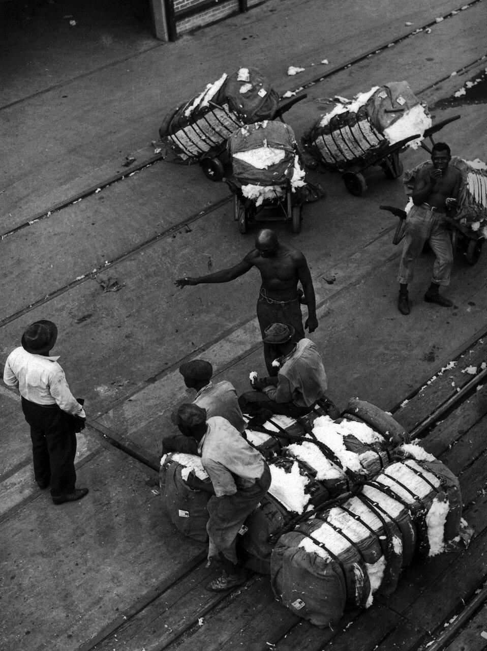1939. Октябрь. Грузчики с тюками хлопка на причале в Хьюстоне