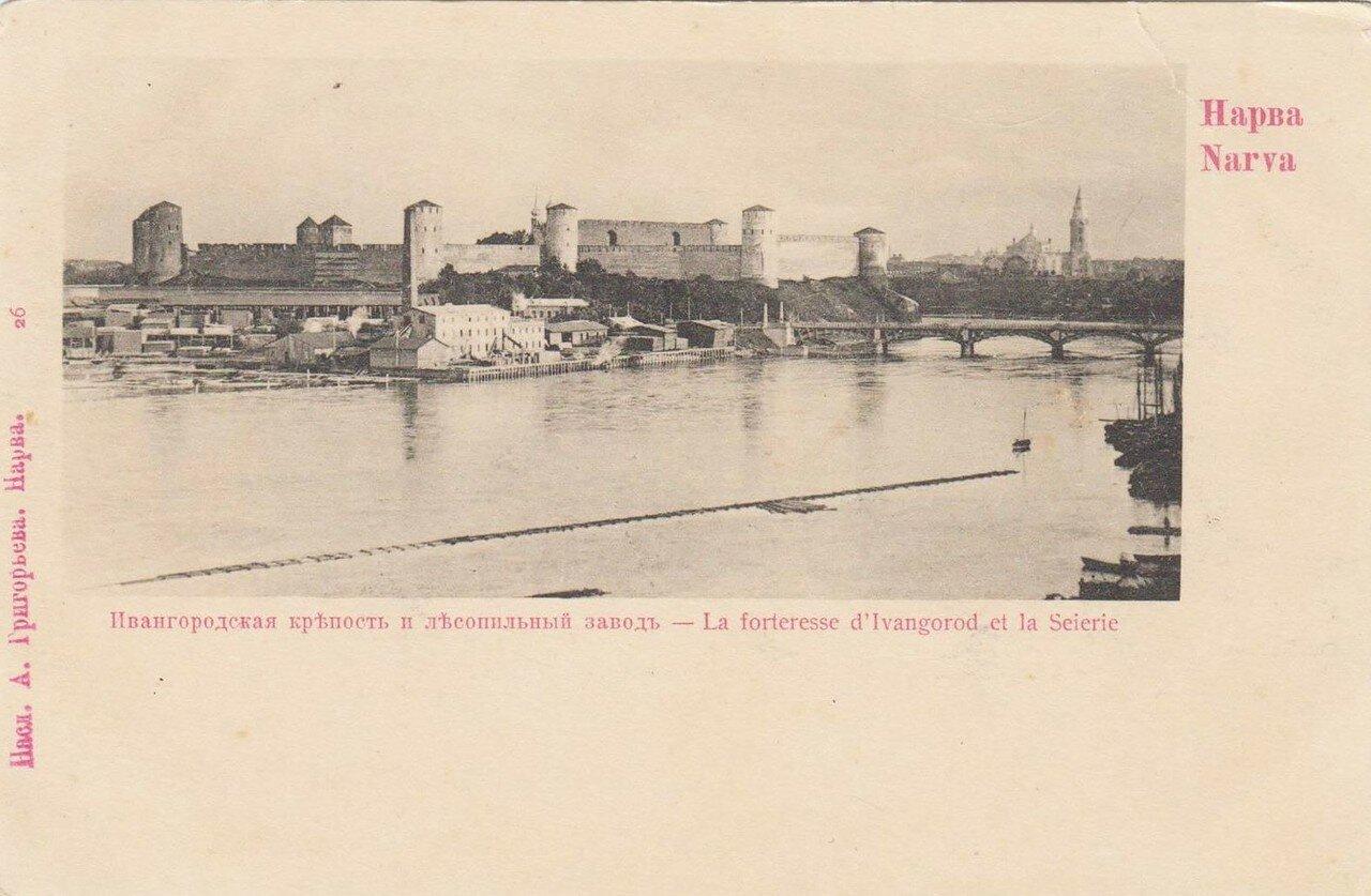 Ивангородская крепость и лесопильный завод