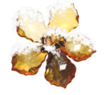 natali_design_xmas_flowerglass2.png