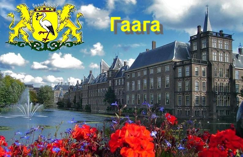 Обзорный пост по Гааге