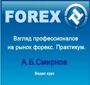 Книга Взгляд профессионалов на рынок форекс. Практикум (CAMRip) 2010