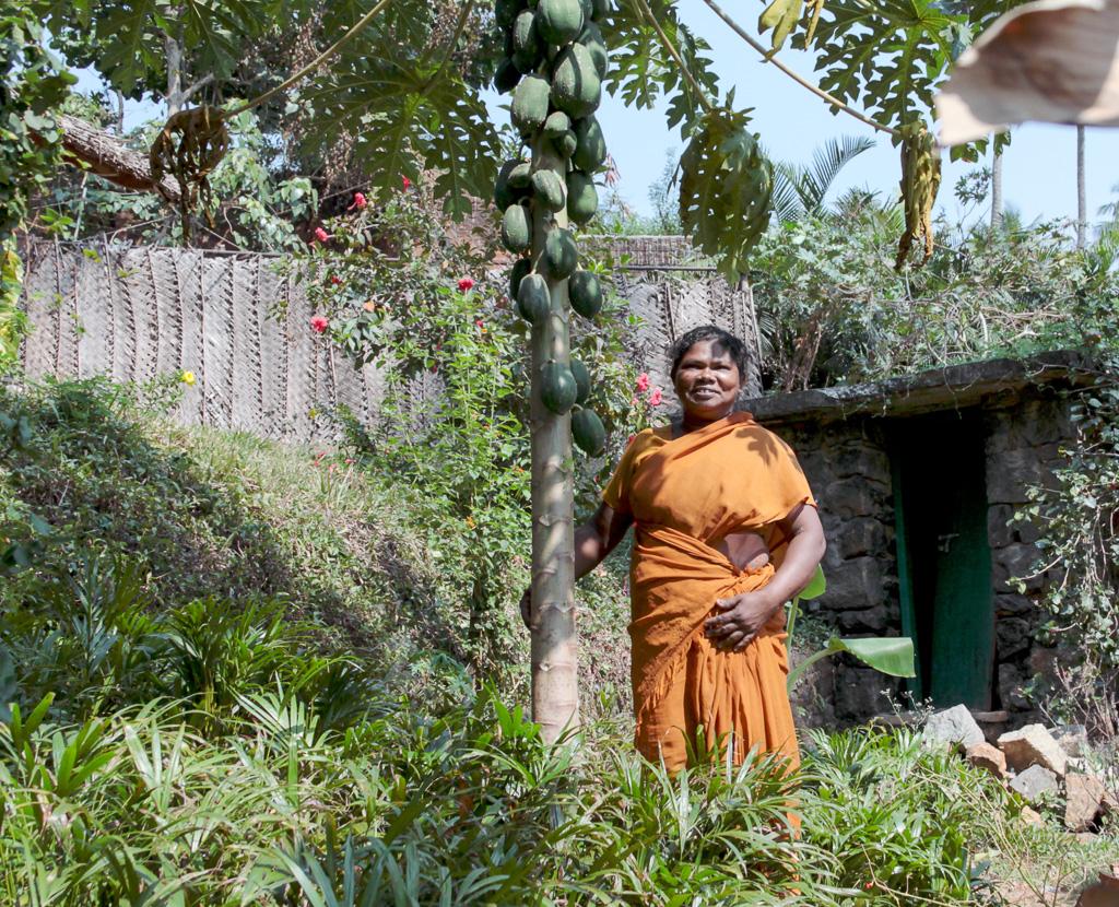 Фотография 8. По дороге из одной индийской деревни в другую... Туры в Кералу и отзывы туристов