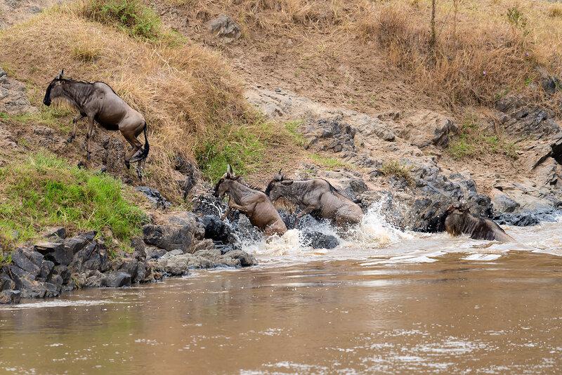 Уникальное природное явление в Восточной Африке