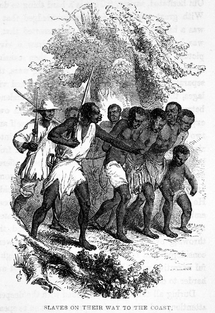 Захваченные рабы, пригнанные на побережье (Нигерия, 1853 год)