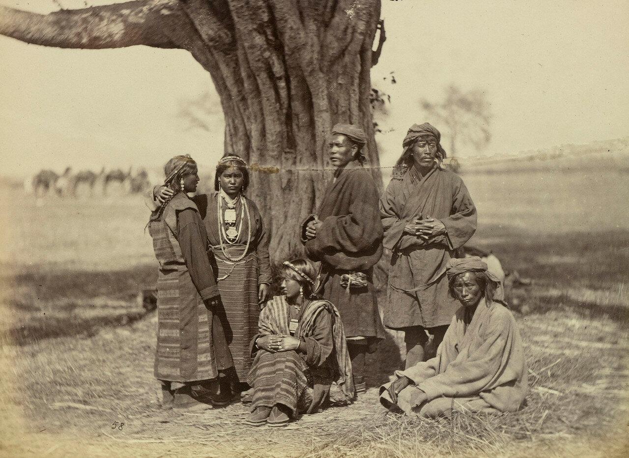 100. Группа тибетцев