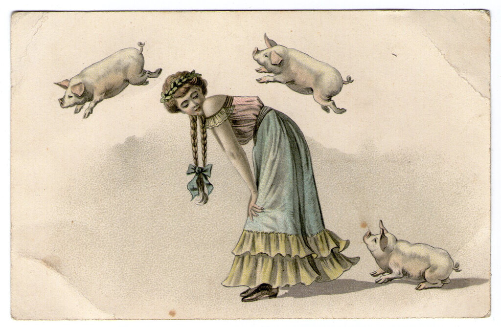 antique french postcard c1905 when pigs fly.jpg
