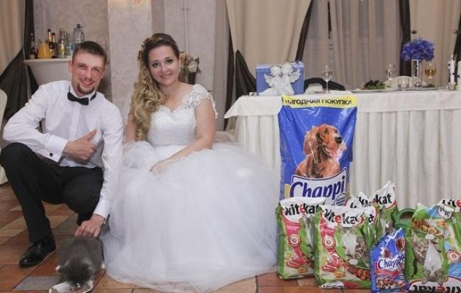 Калининградцы попросили гостей, приглашённых насвадьбу, дарить вместо цветов корм для кошек исобак
