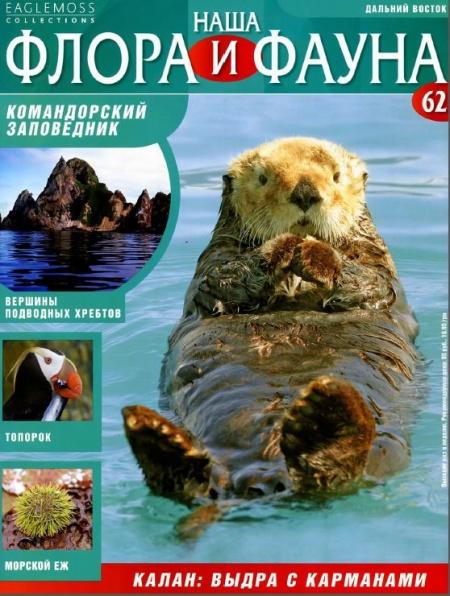 Книга Журнал: Наша флора и фауна №62 (2014)