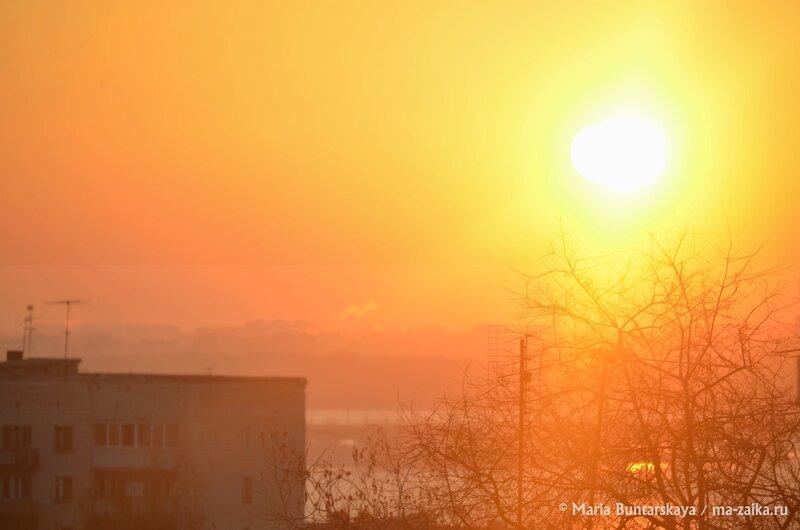 Солнце разбудило, Саратов, 23 ноября 2014 года