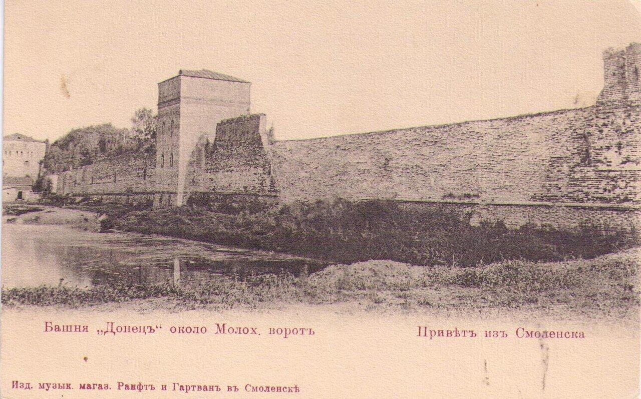 Башня Донец около Молох. ворот