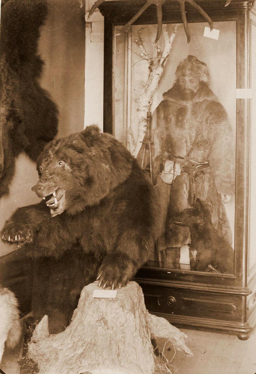 80. Вид экспонатов в павильоне Промыслы и охоты - манекен охотника и чучело медведя