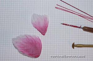 Мастер-класс. Бабочка «Летние грёзы» от Vortex  0_fc0b0_f2e0dcc0_M