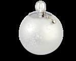 VC_Christmasrose_EL14_sh.PNG