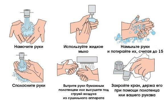 Как правильно мыть руки (инструкция в картинках)