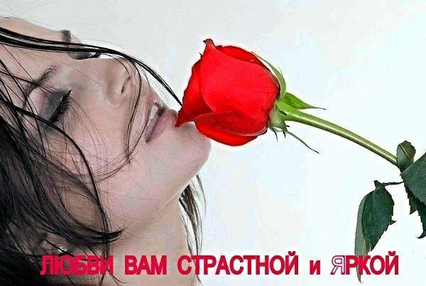 Любви Вам страстной и яркой !!!