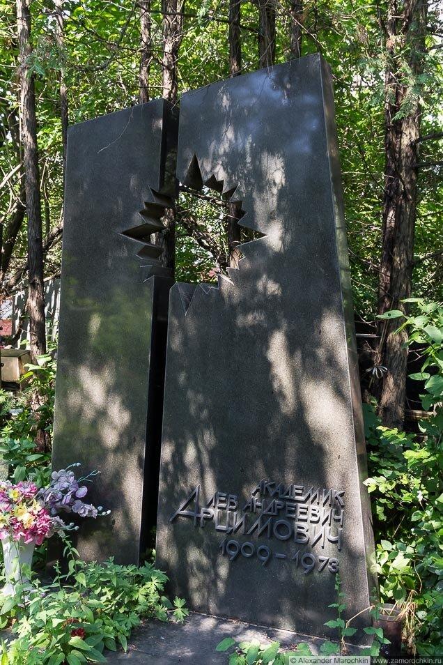 Памятник на могиле Л. А. Арцимовича на Новодевичьем кладбище