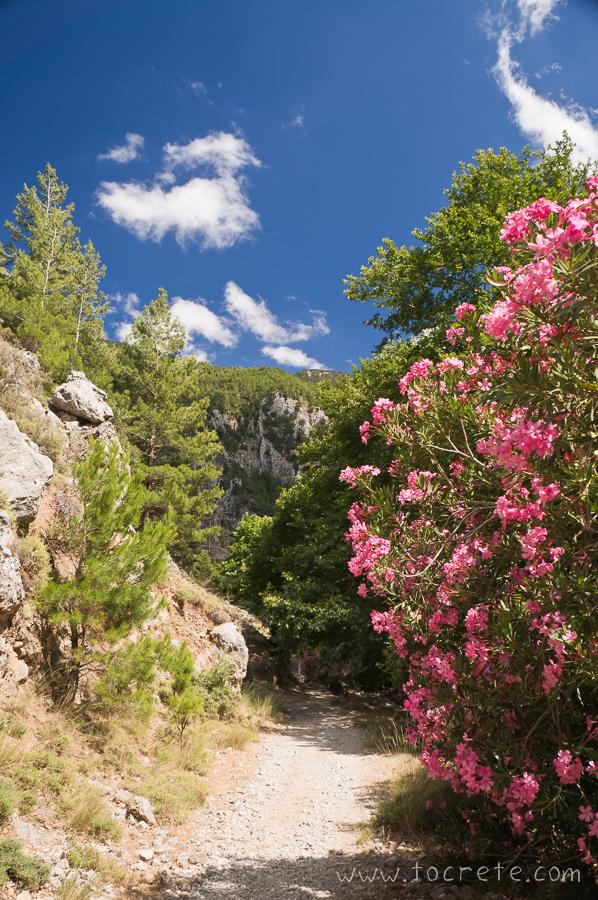 Ущелья Агия Ирини (Agia Irini Gorge)