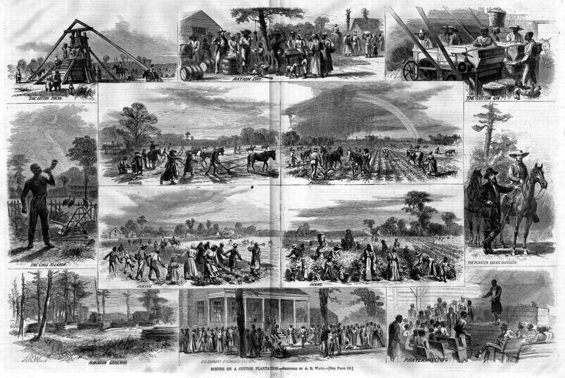 На хлопковой плантации (штат Алабама, 1867 год)