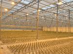 Тепличный комплекс Агрокультура, МЕТТЭМ-Строительные технологии