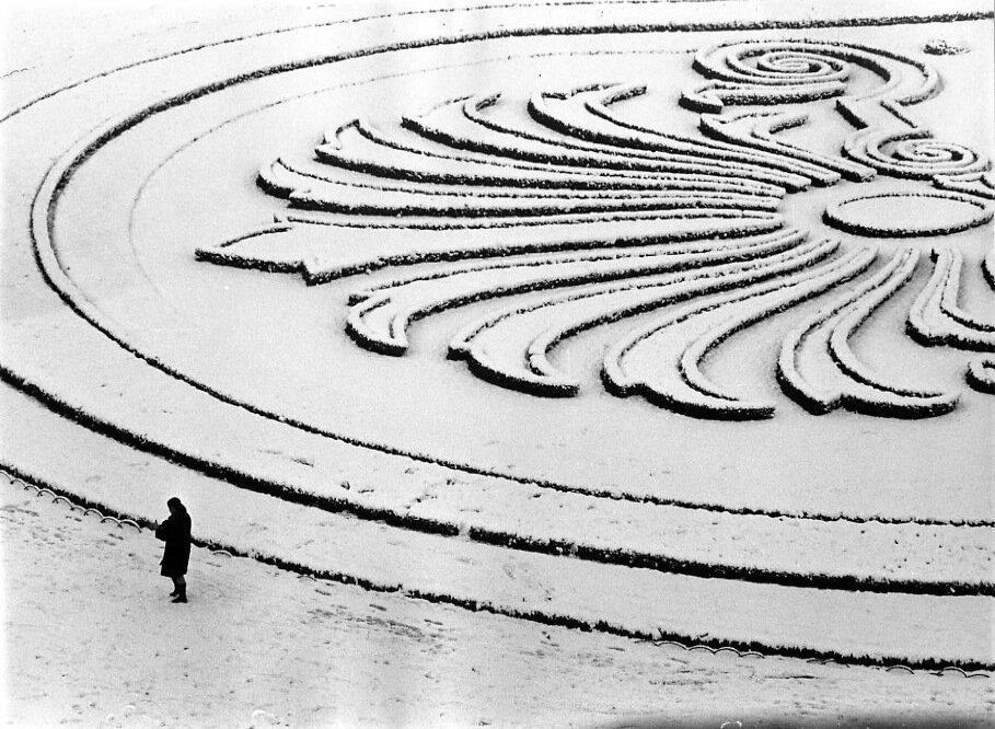 1968. Снежный цветок