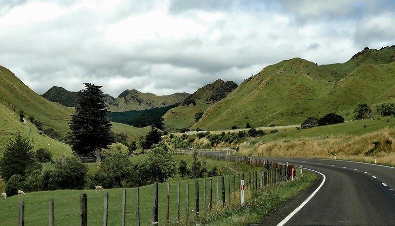 Новая Зеландия без прикрас...