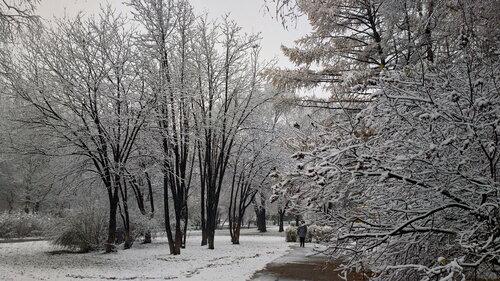 Первый снег слегка прошёлся...