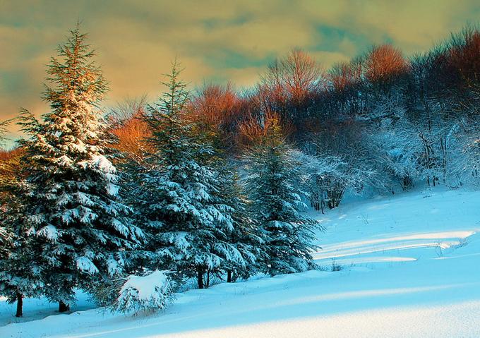Тёплые пейзажи Италии от Стефано Креа 0 127553 c4cd0031 orig