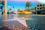 Marymount California University (Kings Education, Ранчо Палос Вердес, штат Калифорния, США)