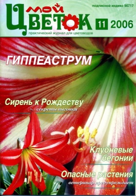 Журнал Журнал Мой цветок 2006 №11