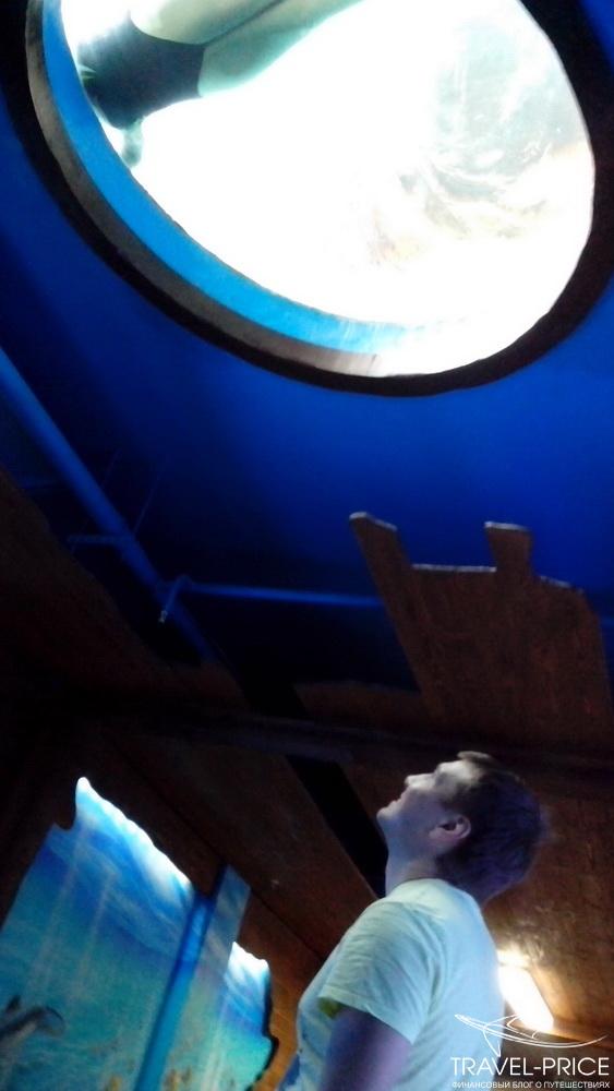 Вход в аквапарк в Казани