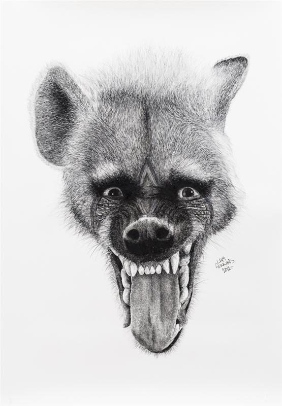 Animal Kingdom, Liam Gerrard80.jpg