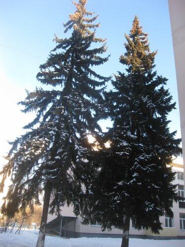 https://img-fotki.yandex.ru/get/15495/131884990.77/0_ec249_59a345a3_L.jpg
