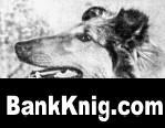 """Книга Книги по воспитанию,дрессировке и болезням собак + Книги по ветеренарии книги - """".doc"""" 20,8Мб"""