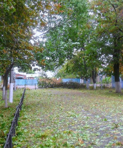 В парке, листья .... SAM_3779 - 1.JPG