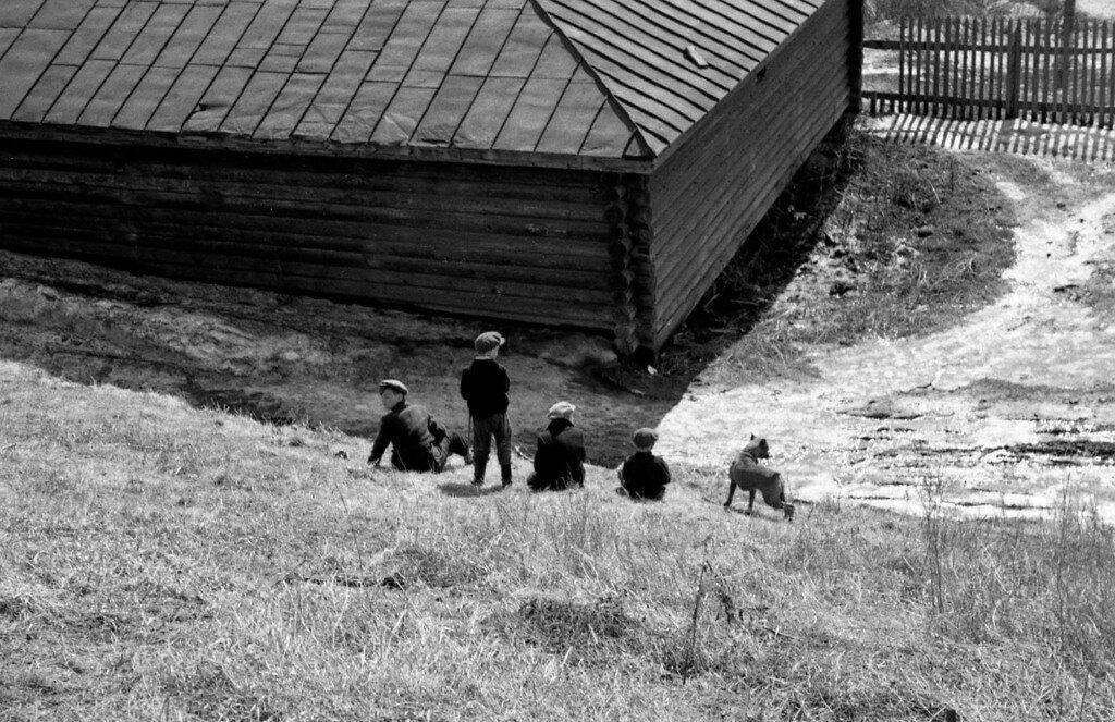 Четыре мальчишки и собака