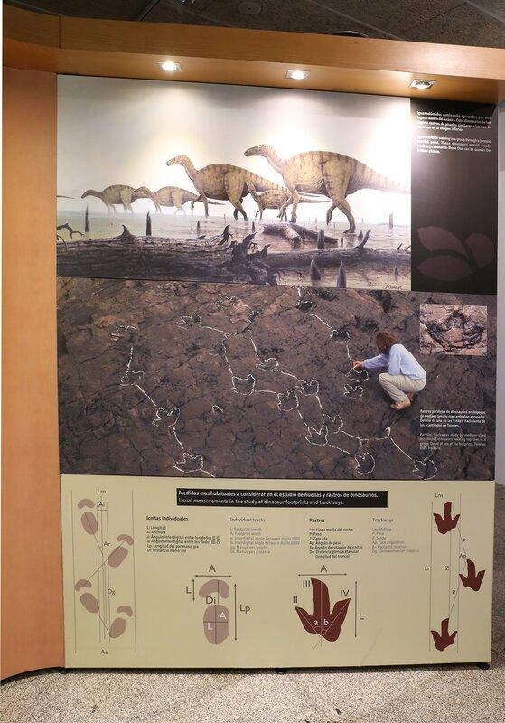 Дом науки в Логроньо. Музей динозавров