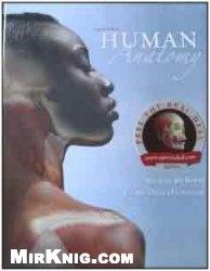 Книга Human Anatomy (2nd Edition)