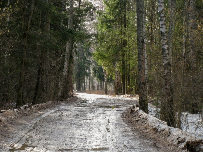 Дорога из Поседкино