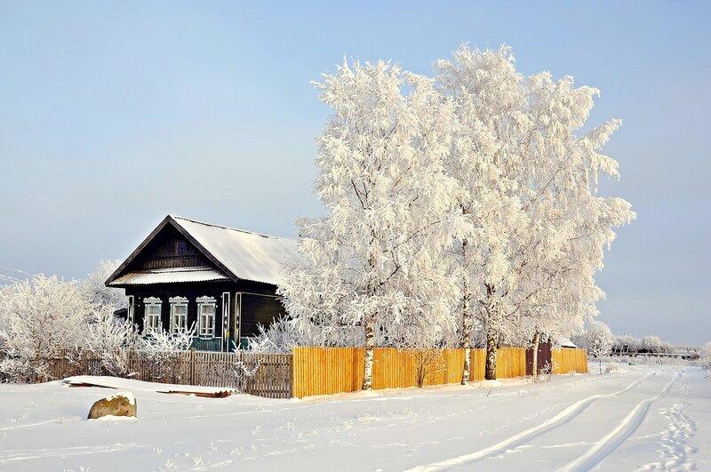 Под белым снегом декабря