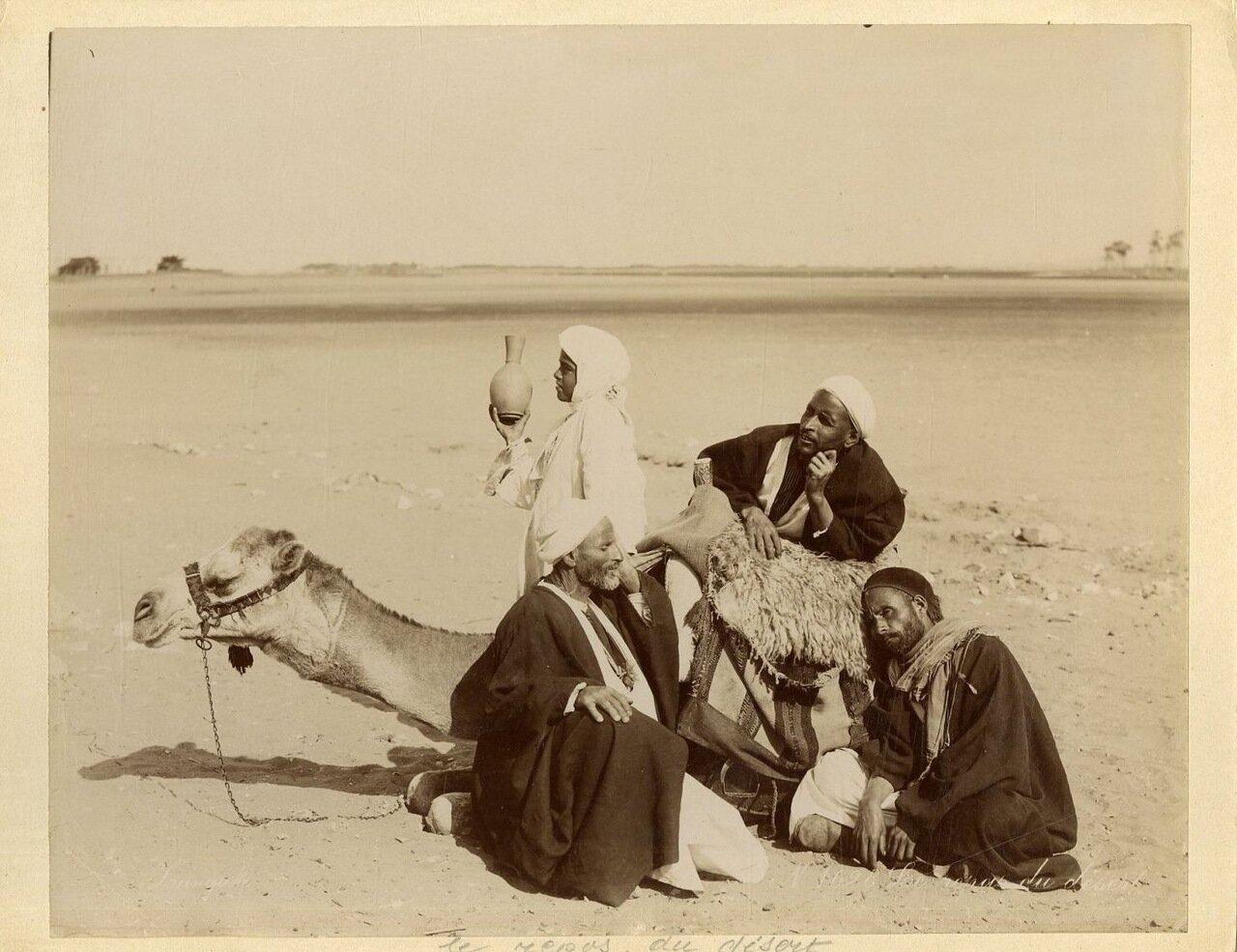 Привал в пустыне