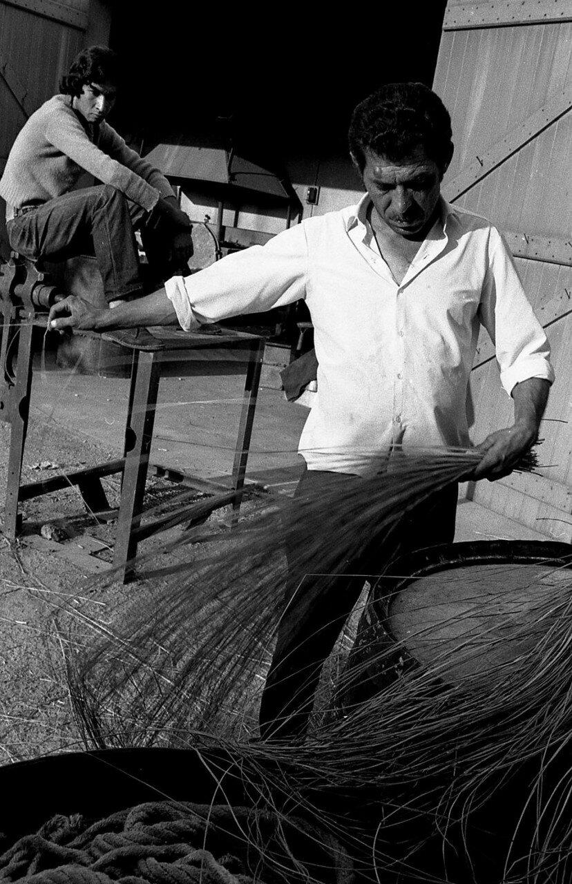 1969. Цыгане в районе Ле-План-де-Грас