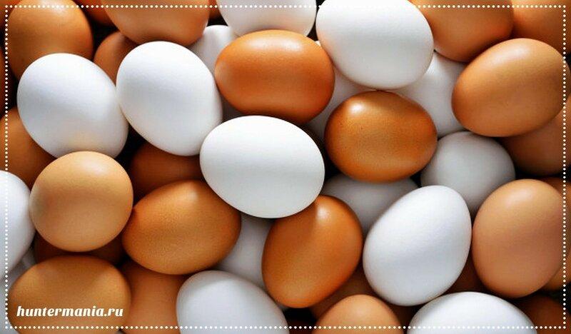 Кулинарные хитрости. Яйца, белок, желток