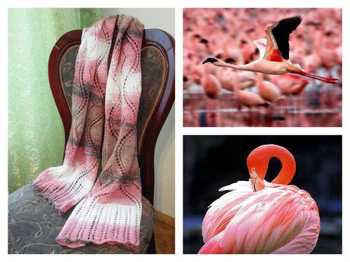 flamingo8min.jpg
