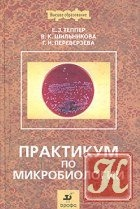 Книга Практикум по микробиологии