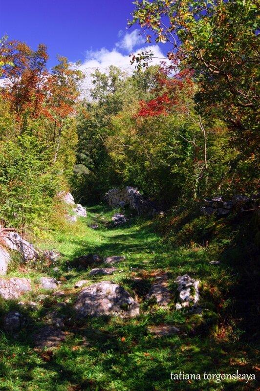 Дорога к церкви Святого Ильи