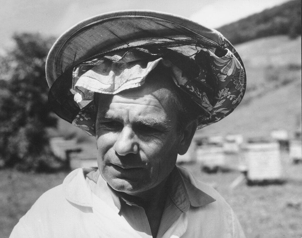 1950. Пасечник
