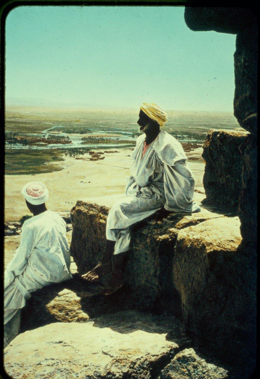 Гиза. Долина Нила от Большой Пирамиды. 1950