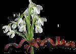 весенние цветы (27).png