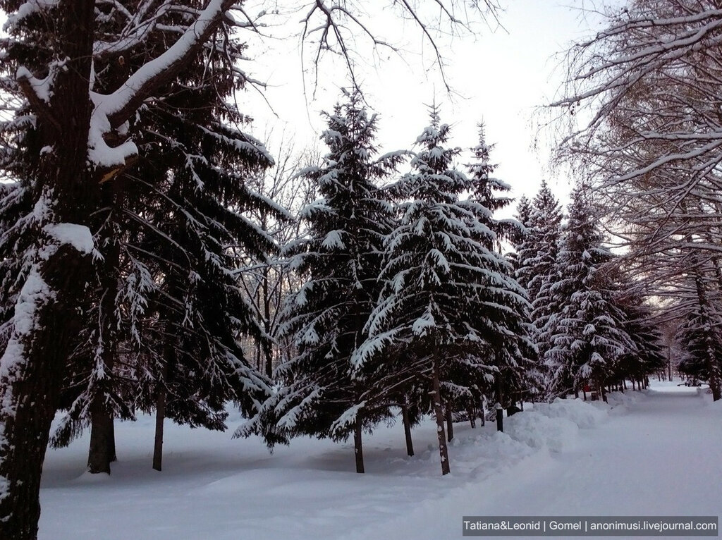 Стерлитамак зимой. Башкортостан